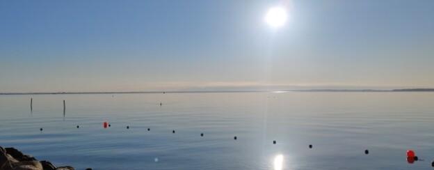Nivaa-havn